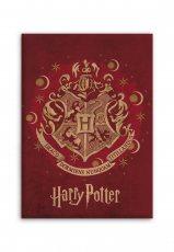 Aymax fleece blanket Harry Potter 140 x 110 cm